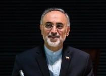 صالحی: برجام به تصویب رسیده و دیگر قابل مذاکره نیست