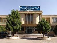 آخرین وضعیت 242 مسموم در کرمان