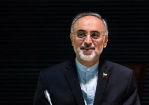 دکتر صالحی: رییسجمهور زمان اجرای تعهدات ایران را تعیین میکند