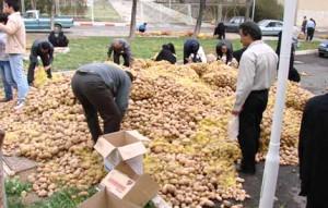 پتانسيل بالاي آذربایجان غربی در جذب سرمايه براي گسترش صنايع تبديلي كشاورزي