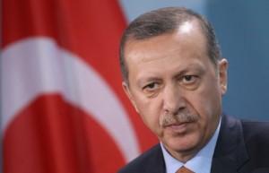 اردوغان درخواست البرادعی برای گفتوگوی تلفنی را رد کرد