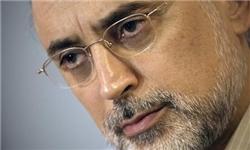 صالحی: وزارت اطلاعات در حال پیگیری اقدامات مجرمانه ۴ خرابکار اتمی است