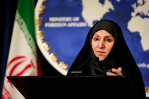 افخم: ایران نیروی نظامی در عراق ندارد