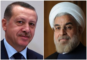 تلاش فوری و مؤثر کشورهای اسلامی برای کمک به مردم غزه/پیشنهاد برای همکاری تهران – آنکارا