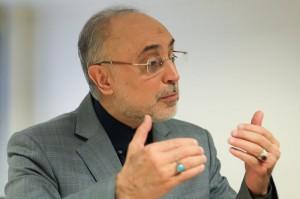 صالحی: روند مذاکرات با 1+5 جای نگرانی ندارد