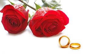 سایت همسر یابی بهزودی رونمایی میشود